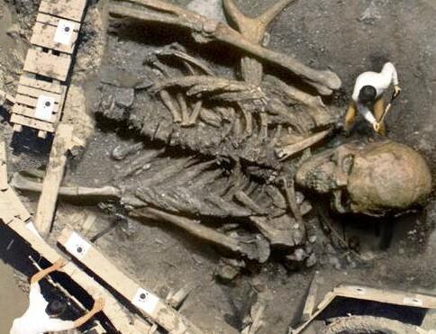 発掘されたアマゾンの巨人