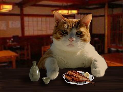 「今日はちょっと辛いことがあってな・・・」 ネコ画像・猫画像